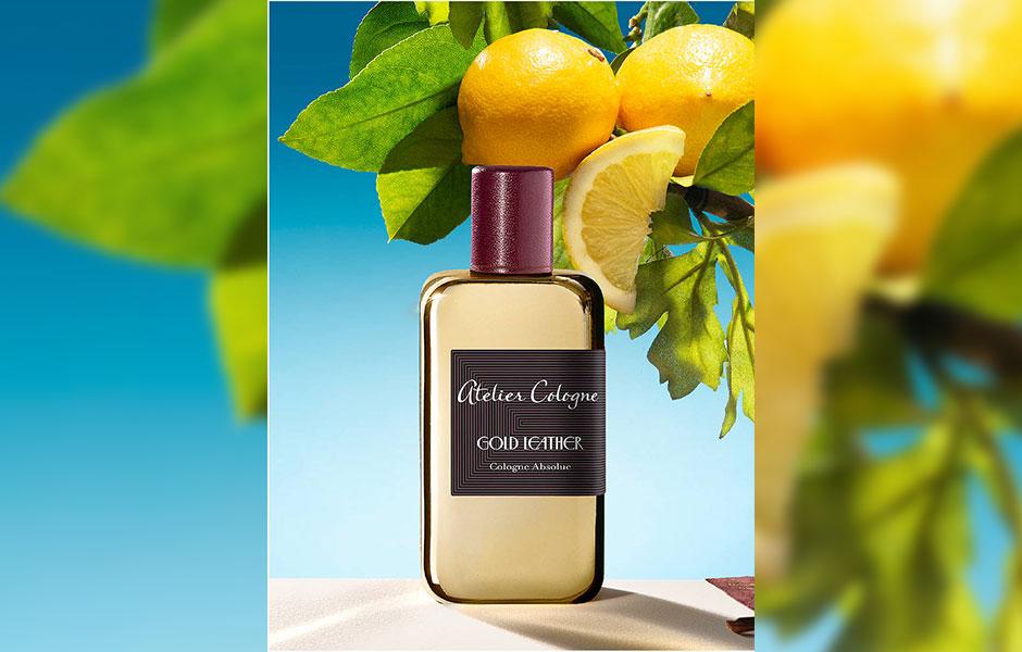 نت هایی که در قلب رایحه عطر ادکلن آتلیه کلون گلد لدر قرار می گیرند، گیاه درمنه و اوکالیپتوس هستند.