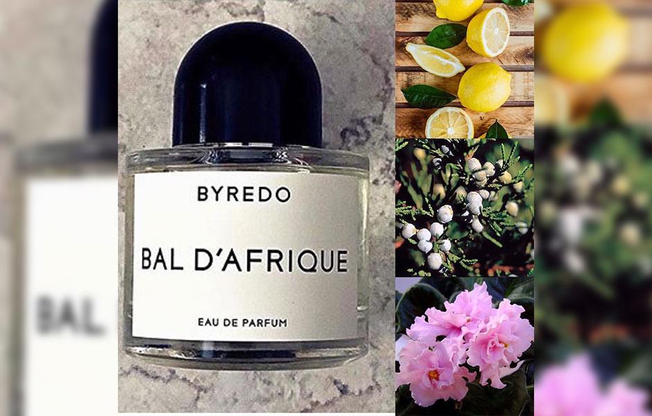 بایردو بال د افریکا به عنوان یک عطر لوکس و ارزنده می تواند بهترین انتخاب برای فصول گرم سال مانند بهار و تابستان باشد.