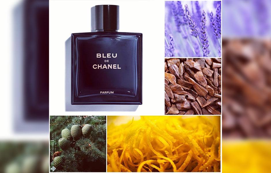 عطر بلو دی شنل پرفیوم (Chanel Bleu De chanel Parfum) با روایحی از گیاه درمنه، نعناع، ترنج و پوست لیمو آغاز می شود.