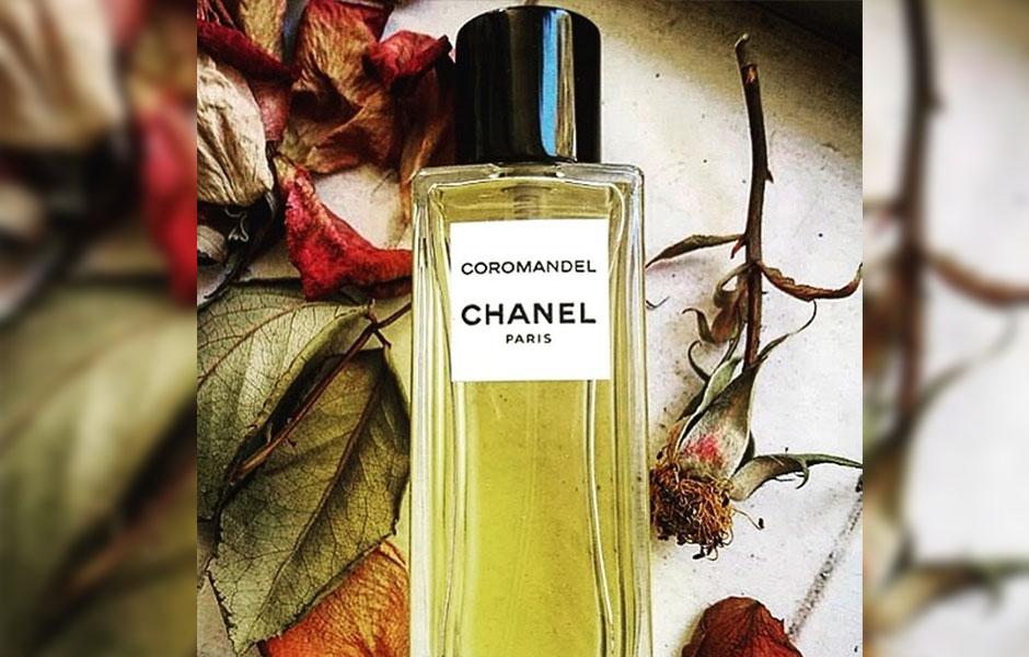 نت های مرکبات یکی از دلایل گرمی عطر شنل کروماندل هستند.