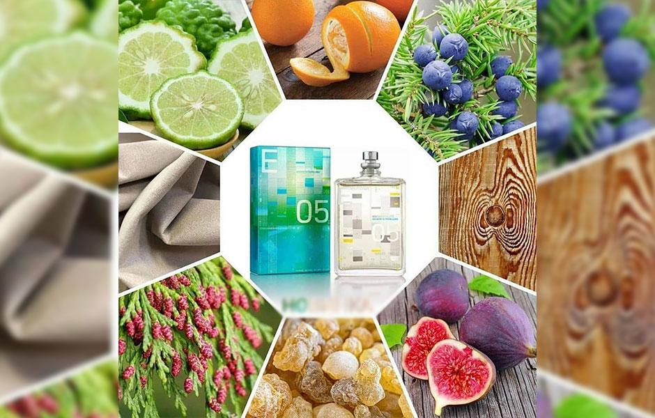 اسنتریک ۰۵ با ترکیباتی از توت سرو کوهی، ترنج، رزماری، پرتقال، برگ انجیر، انجیر، ریحان، برگ بو آغاز می شود.