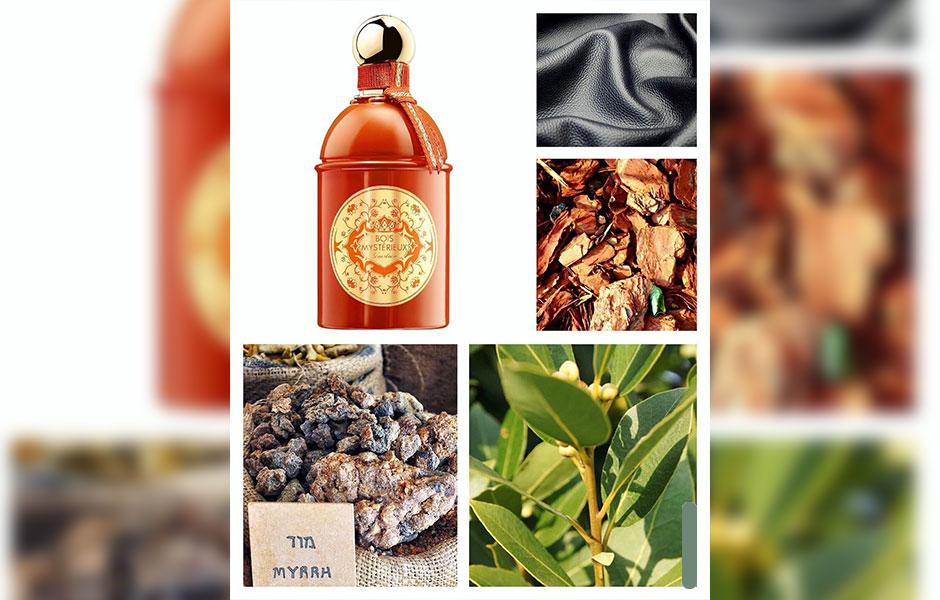 این عطر تلخ (گرلن بوا میستقیو) با ترکیبی از عطر بهار نارنج و برگ بو خود را به شما نشان می دهد.