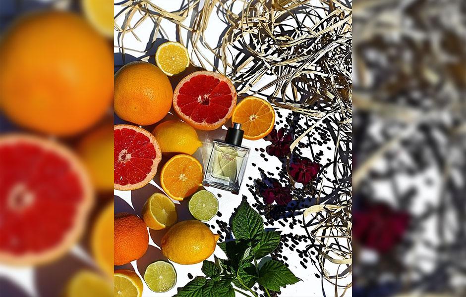 عطر هرمس تق هرمس پرفیوم مردانه (Hermes Terre D'Hermes Parfum) پخش بوی متوسط و ماندگاری طولانی دارد.