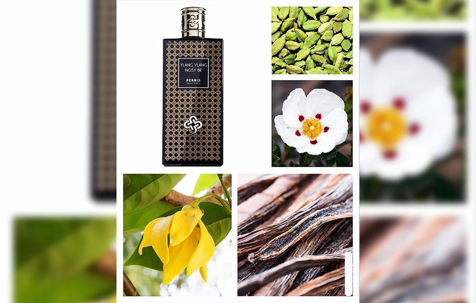 زمانی که عطر یلانگ یلانگ نوزی بی (Ylang Ylang Nosy Be) را اسپری می کنید، ترکیبی از روایح گرم، لطیف و انرژی بخش یلانگ یلانگ، لیمو، گریپ فروت و هل به مشام شما را می نوازد.