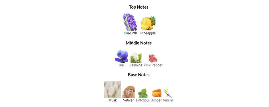 عنبر، نعناع هندی، وانیل، خس خس و مشک نت های پایانی اکسنتو یا اشنتو زرجف هستند.